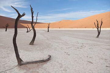 Deadvlei, Namibia von Babs Boelens