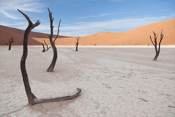 Deadvlei, Namibia van Babs Boelens