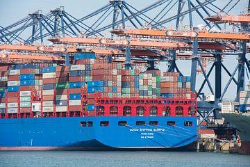 Le port international de Rotterdam avec de grands porte-conteneurs sur Elles Rijsdijk