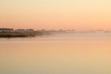Der Reiher im Nebel im Wormer und Jisperveld von Studio de Waay