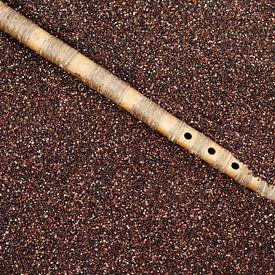 Boliviaanse quinoa met panfluit van Patricia Verbruggen