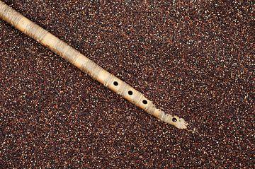 Boliviaanse quinoa met panfluit von Patricia Verbruggen