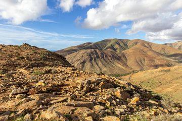 Vulkaanlandschap met verschillend gekleurde bergen op het eiland Fuerteventura van Reiner Conrad