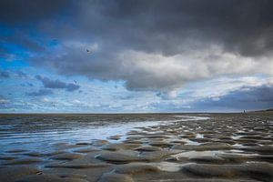 Frisse dag aan het strand van Peet Romijn