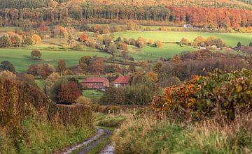 Herfstkleuren in Zuid-Limburg van John Kreukniet