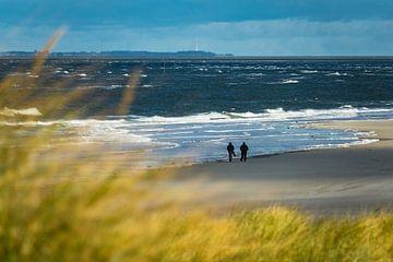 Landscape in the dunes of the North Sea island Amrum. van