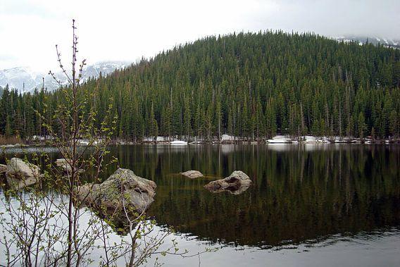 Bear Lake van gea strucks