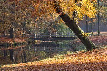Bruggetje over water in de herfst van Robin Jongerden