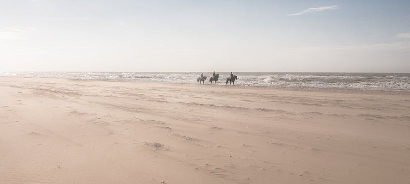 Horses on the Beach van Alex Hiemstra