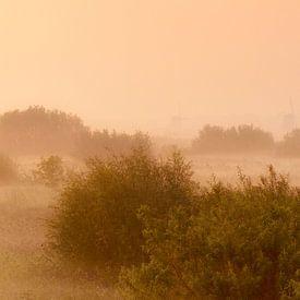 Panorama Kinderdijk van Frank Peters