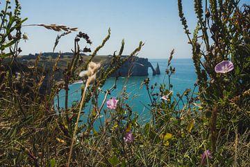 Doorkijkje met veldbloemen, met een van de kliffen van Normandië van Paul van Putten