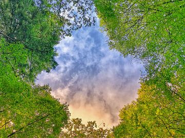 Mooie lucht  van Suzanne W