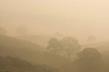 Nebel zwischen den Hügeln von Simone Meijer