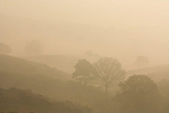 Mist tussen de heuvels