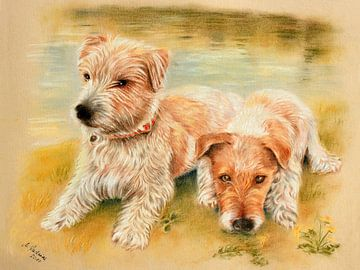 Hundeportrait Jack Russell Terrier van Marita Zacharias