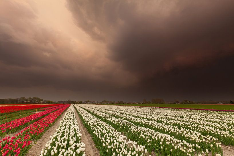 Storm op komst... van Ron Buist