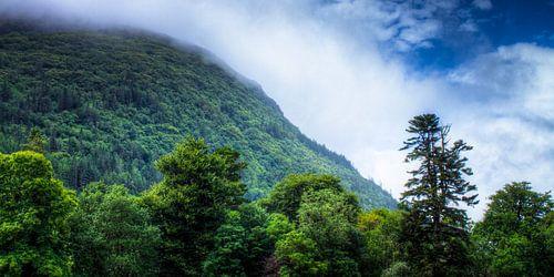 Hills overlooking Muckross Lake, Killarney National Park, Ireland van Colin van der Bel