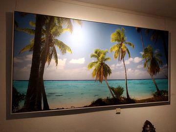 Kundenfoto: Amuri, Aitutaki - Cook Islands
