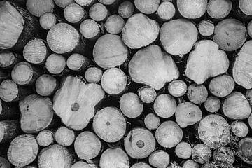 Boomstammen zwart-wit van Marrit Molenaar