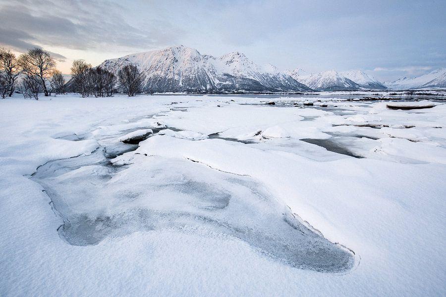 Sneeuwlandschap op de Vesteralen / Lofoten, Noorwegen