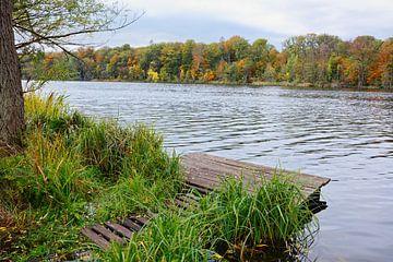 Herbst im Havelland von Gisela Scheffbuch