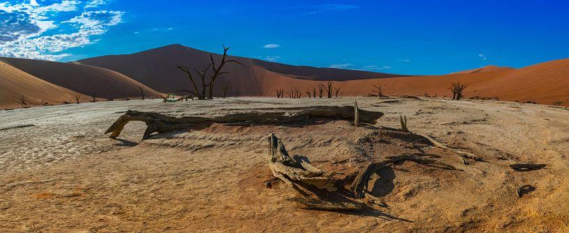 Panorama met dood hout in de Dode vallei, Namibië van Rietje Bulthuis