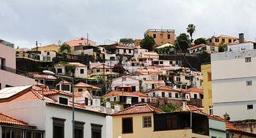 Häuser auf Madeira von Oscuro design