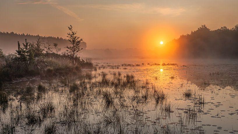 gouden zonsopkomst boven de vijver in de teut te Limburg, Belgie. van Fotografie Krist / Top Foto Vlaanderen