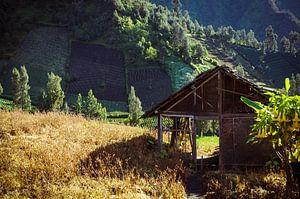Oude schuur Bromo (Indonesië) van