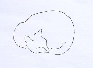 Slapende kat lijntekening van Paul
