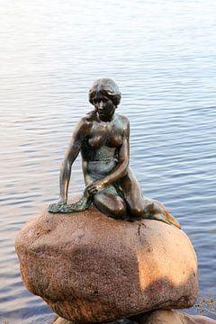 De kleine zeemeermin van Petra Brouwer