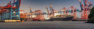 Panorama d'un terminal à conteneurs dans le port de Hambourg par temps ensoleillé en soirée sur Jonas Weinitschke