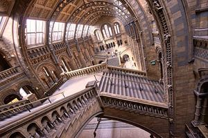 Natuurhistorisch museum Londen / Natural History museum London