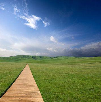 Wanderweg zum blauen Himmel von Jeroen Mikkers
