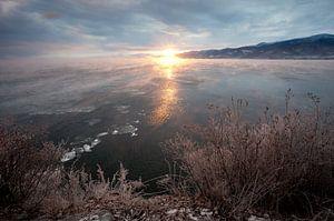 Roze dageraad doet het bevroren landschap herleven