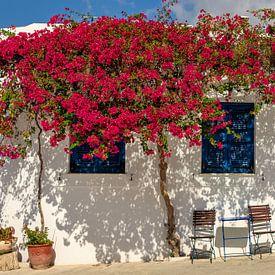 Buntes Paros, Griechenland von Adelheid Smitt