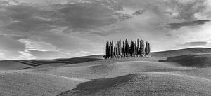 Torrenieri panorama Italië in zwartwit van