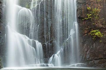 Prentenboek waterval in Australië van Jiri Viehmann