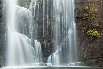 Prentenboek waterval in Australië