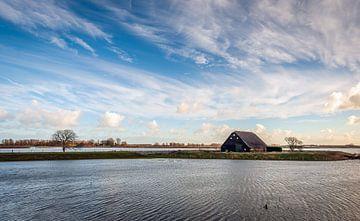Alte Holzscheune bei Flut im Biesbosch von Ruud Morijn