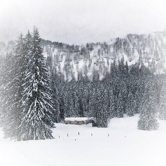 Bavarian Winter's Tale III