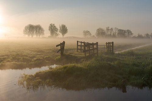 Zonsopkomst bij laag hangende mist in polderlandschap