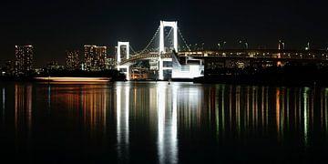 Tokio-avond van Stefan Havadi-Nagy