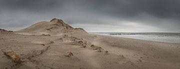 Panorama van Zeeuwse kust met duin en zee von Michel Seelen
