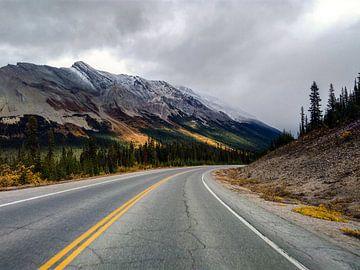 Icefields Parkway zwischen Jasper und dem Banff-Nationalpark von Daan Duvillier