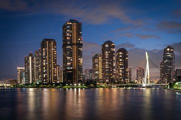Tokyo by Night von Aen Seavherne