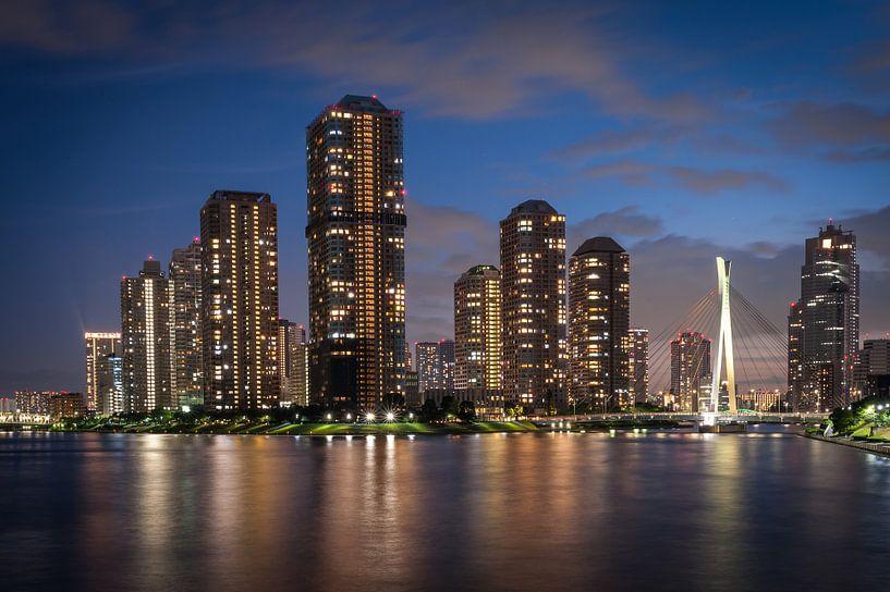 Tokyo by Night van Aen Seavherne