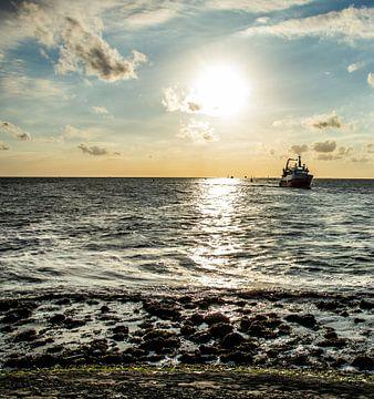 Schiffe am Horizont von Scheepskijker_Havenfotografie
