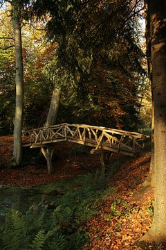 Brücke auf dem Landgut Fraeylemaborg von Pim van der Horst