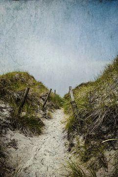 Durch die Dünen van